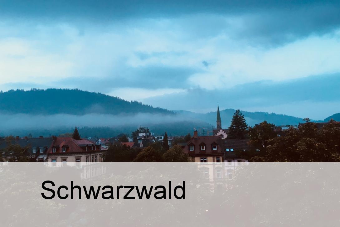 Incoming Startseite Schwarzwald