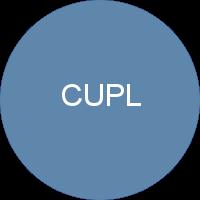 Übersicht Outgoings CUPL